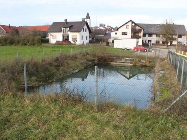 Umbau und Reparatur des Dorfweihers in Teugn